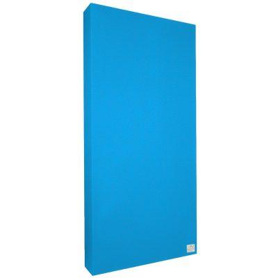 Absorbeur Standard 100x50x6 cm